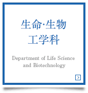 生命・生物工学科 Department of Life Science and Biotechnology