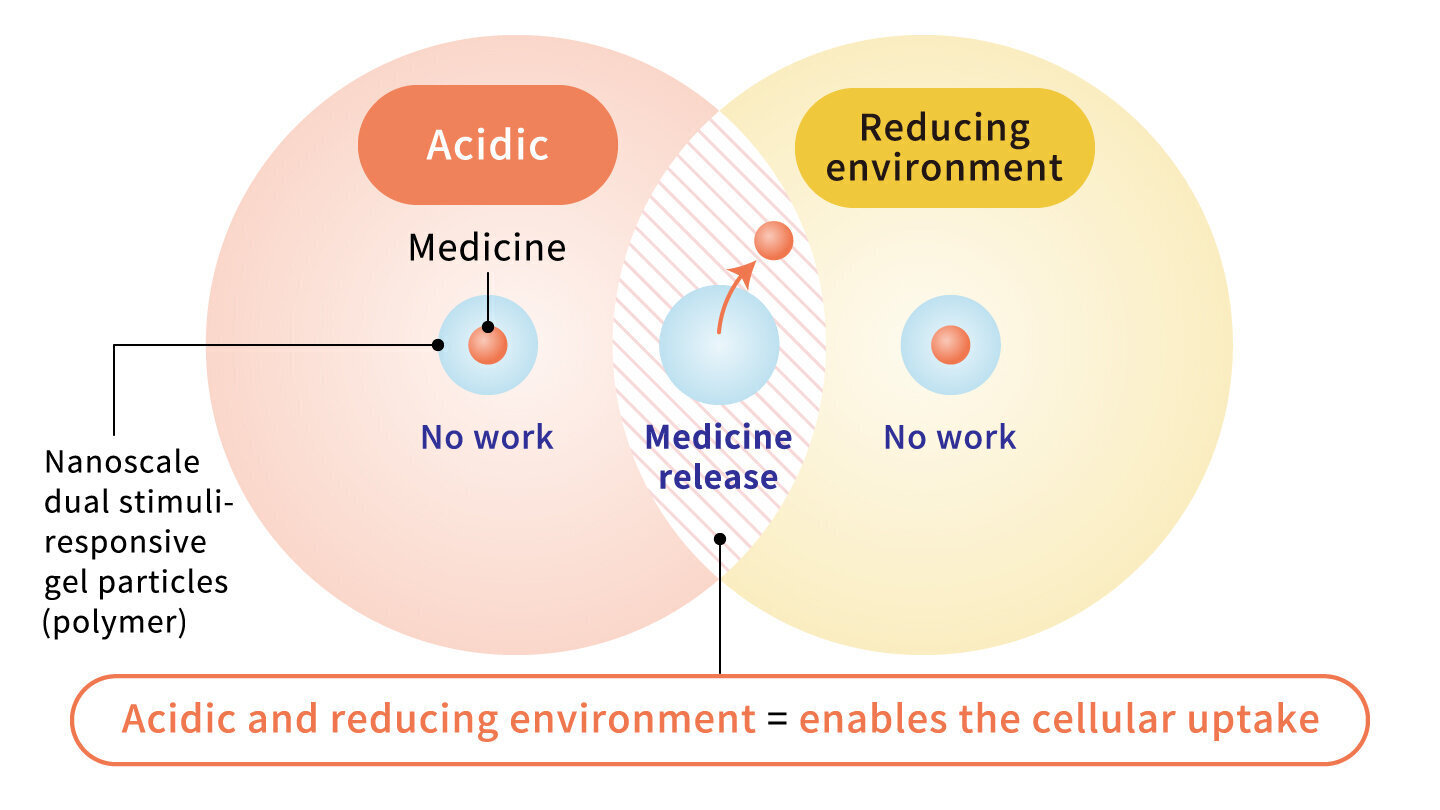 Acidic and reducing environment = enables the cellular uptake